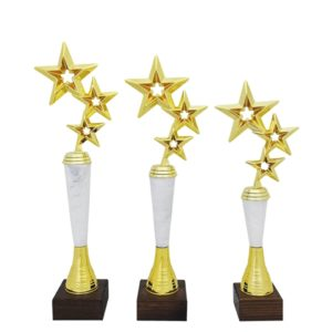 Награды Три звезды купить для награждения