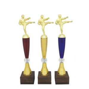 Награды Карате купить для награждения